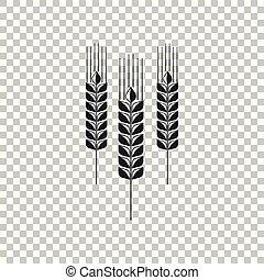 jogo, cereais, sinal, agricultura, design., symbols., trigo, isolado, experiência., cevada, ícone, aveia, apartamento, milho, trigo, símbolo., ilustração, centeio, arroz, transparente, pão, vetorial, orelhas