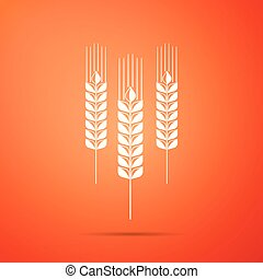 jogo, cereais, sinal, agricultura, design., symbols., trigo, isolado, experiência., cevada, laranja, ícone, aveia, apartamento, milho, trigo, símbolo., ilustração, centeio, arroz, pão, vetorial, orelhas