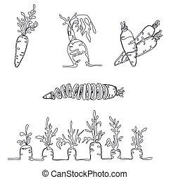 jogo, com, 5, imagens, de, cenoura, feito, em, minimalism