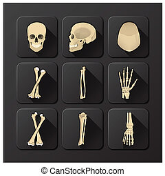 jogo, cranio, saúde médica, osso, ícone