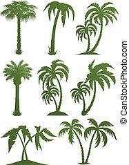 jogo, de, árvore palma, silhuetas