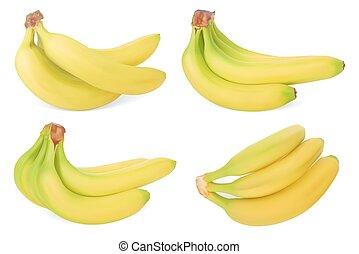 jogo, de, bananas., realístico, vetorial, illustration., isolado, branco, fundo