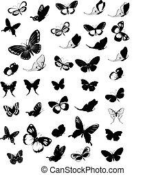 jogo, de, borboletas
