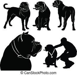 jogo, de, cachorros, silhuetas, bordeaux, dogue