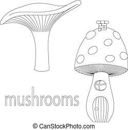 jogo, de, cogumelos, isolado, branco, fundo