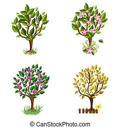jogo, de, decorativo, árvores, estações