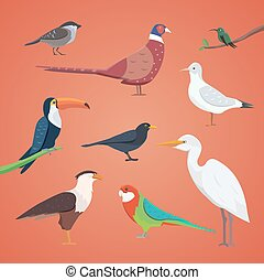 jogo, de, diferente, pássaros, isolated., vetorial, cobrança, caricatura, pássaro