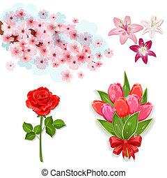 jogo, de, isolado, flores, para, seu, desenho