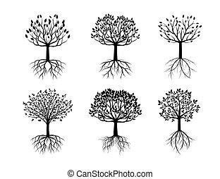jogo, de, pretas, árvores, com, roots.