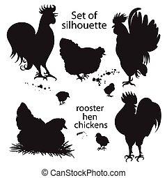 jogo, de, pretas, silueta, de, galos, galinhas, e, chickens.., hand-drawn, doodle
