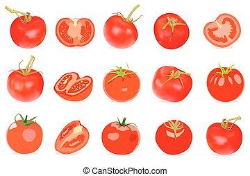 jogo, de, realístico, vermelho, tomatos., vetorial, illustration., isolado, branco, fundo