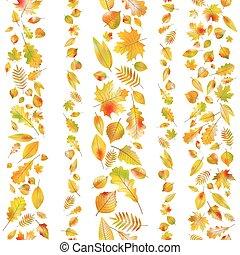 jogo, de, seamless, fronteiras, de, outono, leaves., eps, 10, vetorial