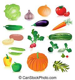 jogo, de, verduras cruas
