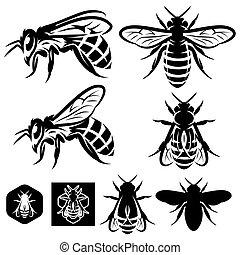 jogo, de, vetorial, monocromático, modelos, com, abelhas, de, diferente, tipos