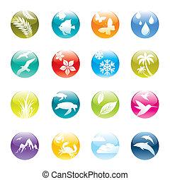jogo, &, eco, natureza, vetorial, ícones