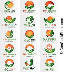 jogo, folha, &, sol, verde, logotipo