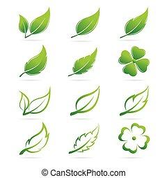 jogo, folhas, vetorial, fundo, branca, ícone