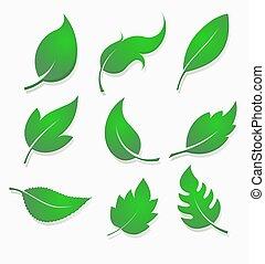 jogo, gradiente, nove, folhas, volume., verde, elementos, mais claro, preencher, desenho, sombra, feito