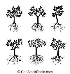 jogo, illustration., folhas, árvores, vetorial, verde, roots.