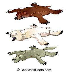 jogo, illustration., isolado, urso, experiência., vetorial, lobo, pele, branca, animado