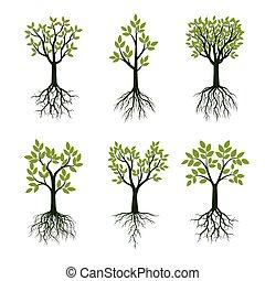 jogo, illustration., primavera, árvores, vetorial, verde, roots.