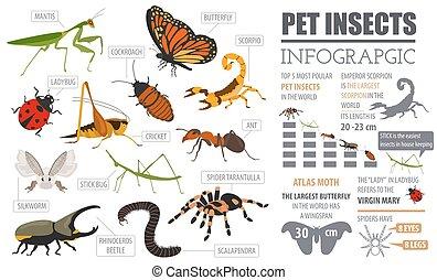 jogo, insetos, casa, infographic, aranhas, estilo, besouros, animal estimação, criar, isolado, outro, animais estimação, apartamento, aproximadamente, bugs, white., próprio, ícone, mantendo, collection., varas, raças