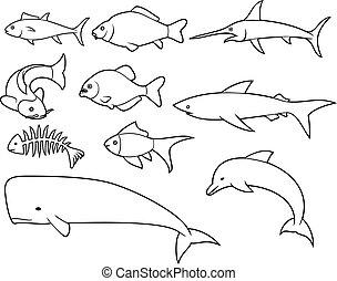 jogo, osso, peixe-espada, peixe, ícones, carpa, magra, tuna), baleia, (dolphin, linha, tubarão, piranha
