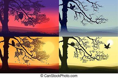 jogo, paisagens, coloridos, natureza