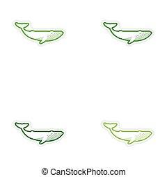jogo, papel, adesivos, branco, fundo, baleia