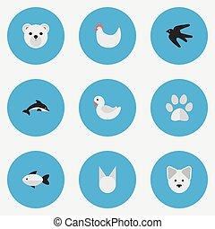 jogo, perch., simples, peixe, ilustração, gato, panda, synonyms, vetorial, icons., selvagem, galo, pé, elementos
