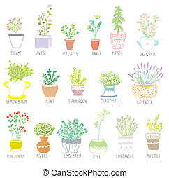 jogo, potes, ilustração, ervas, temperos, flores