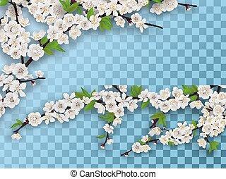 jogo, ramos, primavera, fruta árvore, florescer