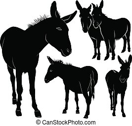 jogo, silhuetas, burros