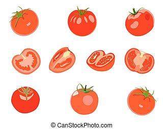 jogo,  tomatos, isolado, vetorial, fundo, branca, vermelho, Ilustração
