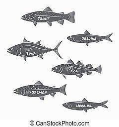 jogo, truta, sardinha, peixe, salmão, labels., experiência., silhuetas, atum, branca, arenque, bacalhau
