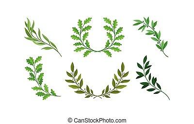 jogo, vetorial, separado, folhas, ramos, grinalda, ramos