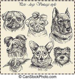 jogo, vindima, cão, mão, vetorial, desenhado, style.