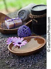 jogo, violeta, dayspa, natureza