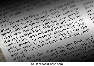 John 1:12 - Bible detail of John 1:12 , a popular New...