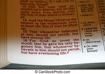 John 3 16 verse - John 3:16