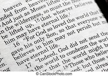John 3:16 in the Christian Bible, For God so loved the...