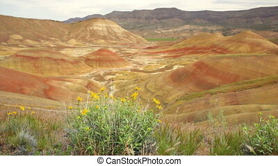 Painted Hills - John Day Fossil Beds National Monument,...