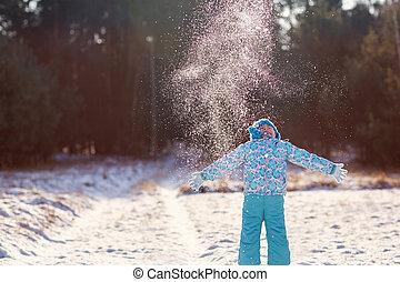 joies, hiver, saison