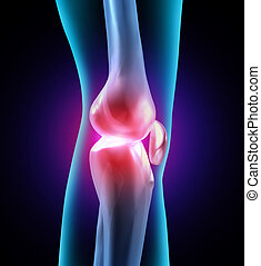 Joint discomfort and painful human joints as a medical illustration with bone anatomy and see through body part showing health care problems with flexibility and arthritis related orthopedic needing doctor assisted therapy.