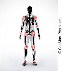joints, noir, numérique, squelette
