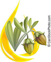 Jojoba oil. Stylized drop. Vector illustration on white...