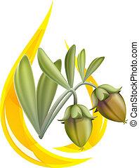 Jojoba oil. Stylized drop. Vector illustration on white ...