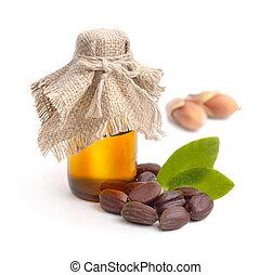 jojoba, (simmondsia, chinensis), folhas, sementes, com, oil.