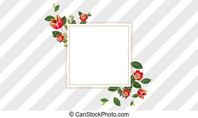 joli, tulipes, conception, frontière rouge