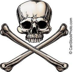 Jolly roger illustration